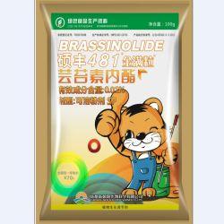 14-Brassinosteroid hydroxylés (naturelles brassinolide) 0,01 % d'eau Poudre Soluble