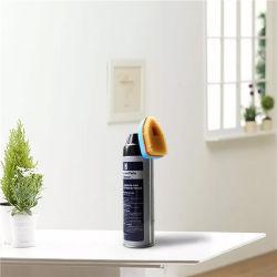 Aérosol de nettoyage le fer blanc peut avec brosse de nettoyage