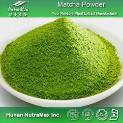 100% 자연적인 Matcha Powder (100% 통행 80 메시)