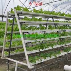 Garden Greenhouse Aquaponics Growing Systems NFT Channel Vertical Hydroponics System