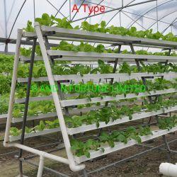 Sistema verticale di coltura idroponica della crescente Manica dei sistemi Nft di Aquaponics della serra del giardino
