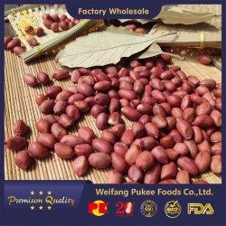 Noccioli di arachidi grezzi/pelle rossa/garanzia di qualità/tutte le misure/alimenti Pukee/Sunreal/imballaggio fine