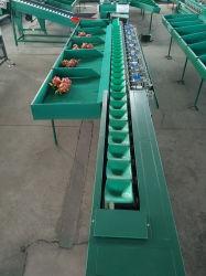 Poids de Fruits & Légumes populaire Classement côté unique de la machine de tri