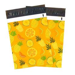Ananas & de Oranje PolyZak van de Verpakking met de ZelfKleefstof van de Verbinding