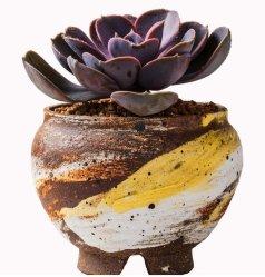 Jardín de cerámica de porcelana decorativa Maceta