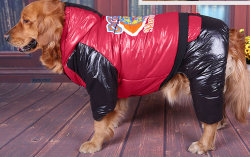Mercado Mayorista barata réplica personalizada de la parte superior del diseñador de ropa de mascota perro Royal ropa ropa de perro grande Qiu Dong Gran Perro Golden Retriever el Labrador Pet
