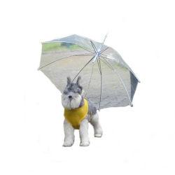 Chien de plein air transparent Doggy imperméable Chiot parapluie en plomb de la chaîne