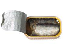 Sardine Canned Food High Quality를 가진 신선한과 Cheap