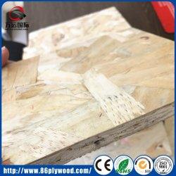 Cartone per scatole laminato migliore quantità OSB di Linyi per la decorazione