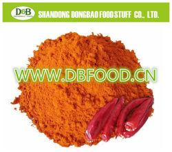 En bonne santé de bonne qualité de piment en poudre (80-100 mesh)