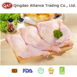 고품질 언 Halal 닭 다리 고기