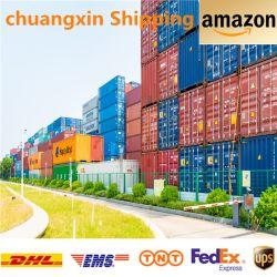 الصين إلى الولايات المتحدة للشحن البحري Roro