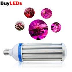 LED 150W grandir la lumière LED de lumière à spectre complet de maïs, 8000LM lampe de feu de maïs pour les plantes de culture hydroponique, Jardin, Green House