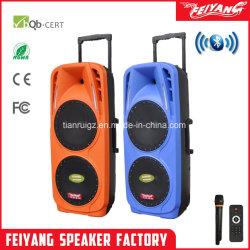 Feiyang 10 de Professionele Draagbare BT Spreker van '' x2 met Kleurrijke Lichte F73