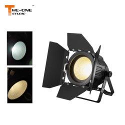 La PARITÀ della PANNOCCHIA LED di colore completo di DMX RGB può la PRO illuminazione