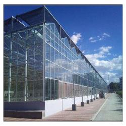 أكسسوارات الصوبات الزجاجية الكبيرة المتعددة المدى/الفراولة/الخيار/الفلفل PC PolyCarbonbonate Sheet/Glass/Film المزرعة/الحديقة/الزراعة/الصوبات التجارية