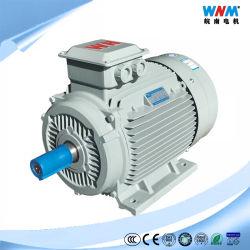 Cer CCC-Dreiphaseninduktion Wechselstrom-Elektromotor Iec-(IE1 IE2 IE3 IE4) für Ventilator-Pumpen-Gebläse-Kompressor-Zerkleinerungsmaschine-Förderanlage IC411 Tefc F IP55 63~355mm 0.12~400kw