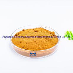 식물 소스 연한 노란색 분말 아미노산 45%