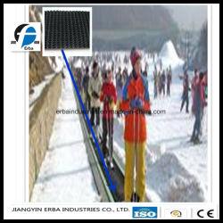 Transportband van uitstekende kwaliteit van de Toevlucht van de Ski de RubberVoor vervoert