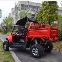 Motore elettrico del Buggy di duna degli adulti poco costosi UTV della Cina grande 3000W