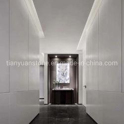 De zuivere Witte Gekristalliseerde Plak van de Steen van het Comité van het Glas voor Countertops en Tegels