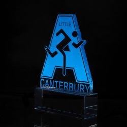 Promozione personalizzata Trofeo metallo per regalo Custom a basso prezzo ferro inox Gold Cup Premio souvenir Metal Craft (007)