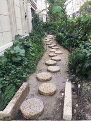 Pavimentadora de granito/Adoquines/Paisaje/Jardín de piedra y piedra piedra decorativa