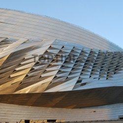 مبنى فني مواد ديكور معدنية غطاء جدار خارجي ثلاثي الأبعاد من الألومنيوم اللوحة