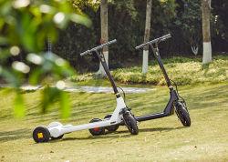 2020años/COCHE/moto de tres ruedas Electri Smart Balance con el mejor precio