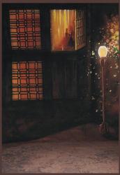 La mousseline main Toile de fond de la photo Peinture 10x20ft RMU-002