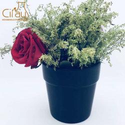 El titular de la flor de cerámica decorativa personalizada Pot