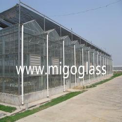 América suprimento de gases com efeito de vidro float temperado Vidraças de vidro temperado duplo revestimento
