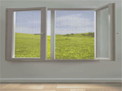 黒いガラス繊維の昆虫スクリーンWindowsスクリーン