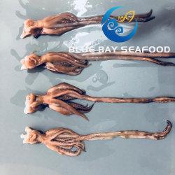 Taille 30-40 g de calmars congelés tête noire