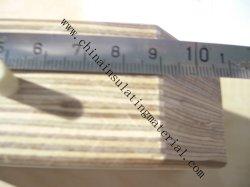 Отсутствие короткого замыкания листу фанеры ламинированной Бук Виниры Phenol-Formaldehyde полимера со сжатым воздухом из дерева