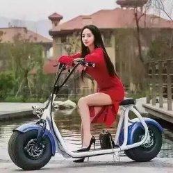 Populäre Citycoco Cer-Zustimmung Harley elektrischer Roller Ebikes Ausgleich-Roller