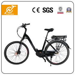 36V 350W стиле электрический велосипед с задним литиевой батареи для монтажа в стойку