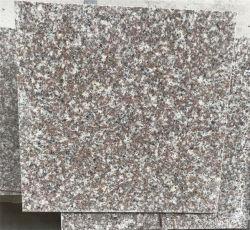 Polido natural G664 Branco/Preto/Amarelo/verde/marrom/rosa/azul/cinza/Luz de granito e mármore/Travertinos/Rocha/Mosaico/Piso Onyx/Piso/parede para decoração de azulejos