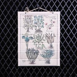 Bilder für Den Zeichensaal Gerahmte Wandkunst Home Dekoration Drucken auf Canvas Giclee-Kunstwerken