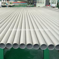 De Naadloze Pijp ASME/ASTM SA312 304 316L SA789 /SA790 Uns S31803 S32750 van het roestvrij staal