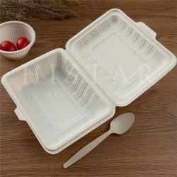 옥수수 전분 일회용 음식 용기 탈취 내열 식품 포장 식사용 상자 생분해성 런치 박스