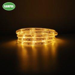 Chinesisches Fabrik-7.3m im Freien Rotes/Grün-/blaues Seil-Licht-/LED dekoratives Weihnachtsim freienlicht des RGB-3528 SMD RGB LED Streifen-des Licht-/LED
