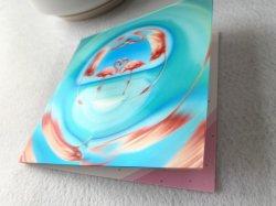 熱いSell Animal Custom 3D Lenticular Printing Greeting Card