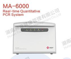 실시간 양이 많은 PCR Ma6000