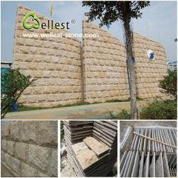 De Steen van de Muur van de Paddestoel van het graniet/van de Lei/van het Kwartsiet/van de Travertijn/van het Kalksteen