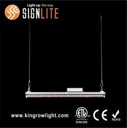 Listado de ETL AC249-528V crecer LED luz para la industria de la siembra a gran escala