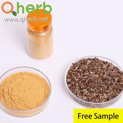 MILK Thistle Dry Extract Silymarin Powder Silybin+Isosilybin 80% مصنع UV استخراج
