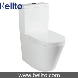 Безободковые Туалет туалет с водяным знаком (B-021)