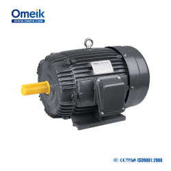 La norma IEC Aeef de alta eficiencia del motor eléctrico de jaula de ardilla.