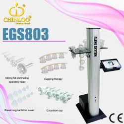 아름다움 장비 유방 확대 유방 마사지 기계 (EGS803)